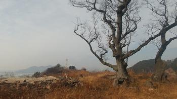 삼랑창 뒤편 후포산의 사라진 의충사