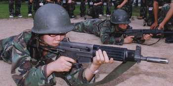 '여성 군 의무복무화' 청원
