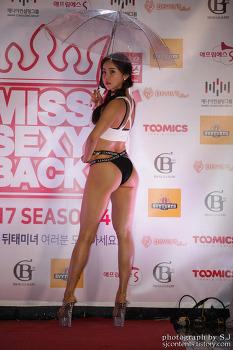 2017 미스섹시백 한강크루즈 파티 포토월