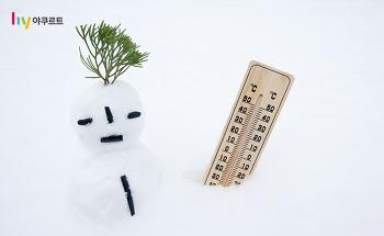 슬기로운 겨울생활, 과학자가 추천하는 겨울 살림 노하우