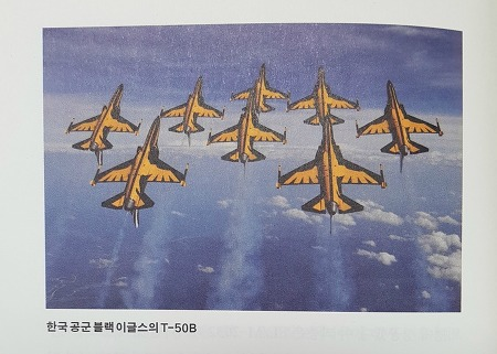 강남 일대 전투기 굉음! 그 정체 블랙 이글스의 T-50B를 알아보자