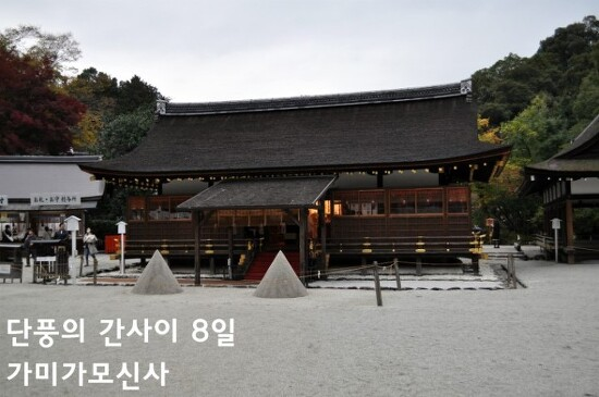 단풍의 간사이 - 8일 교토 라쿠호쿠1 (가미가모신사上賀茂神社)