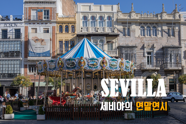 스페인 생활기 : 세비야의 연말연시