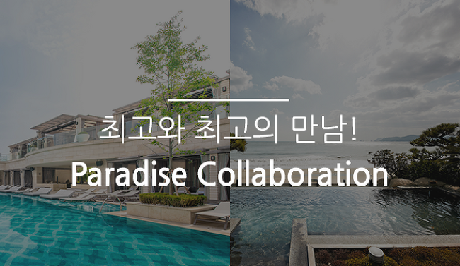 최고와 최고의 만남! Paradise Collaboration
