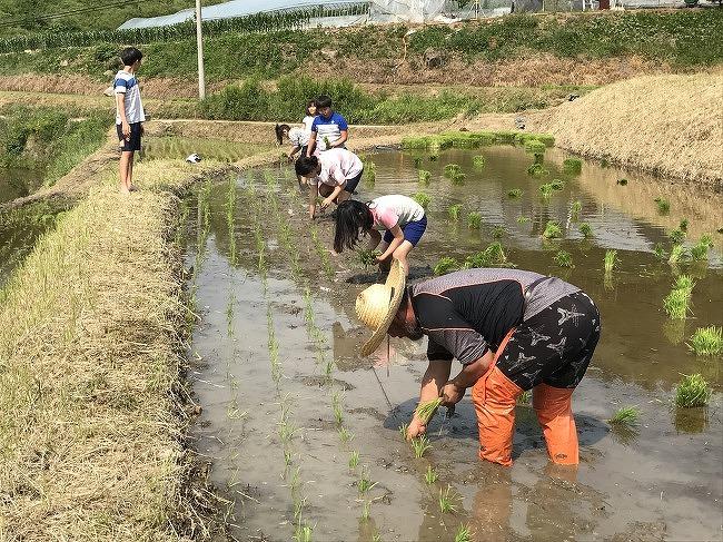 먹을거리공동체 2월 쌀주문서