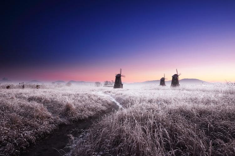 12월 첫번째 주말...아침_소래습지 눈...