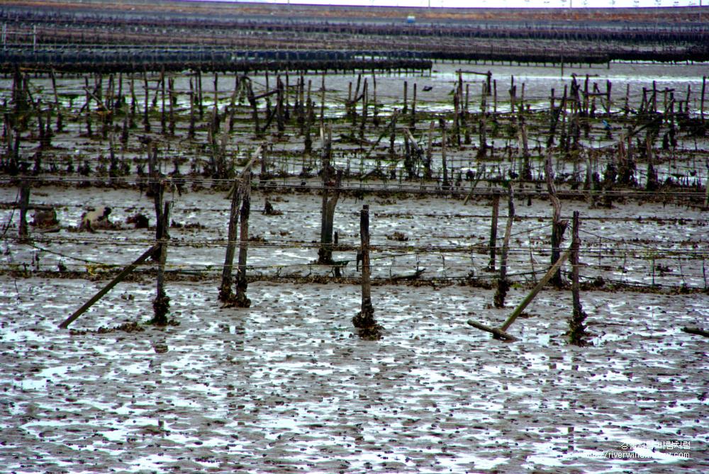 바다농장-개펄농장