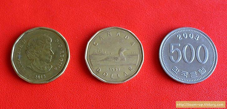 캐나다 역사와 동전 이야기 1달러 루니