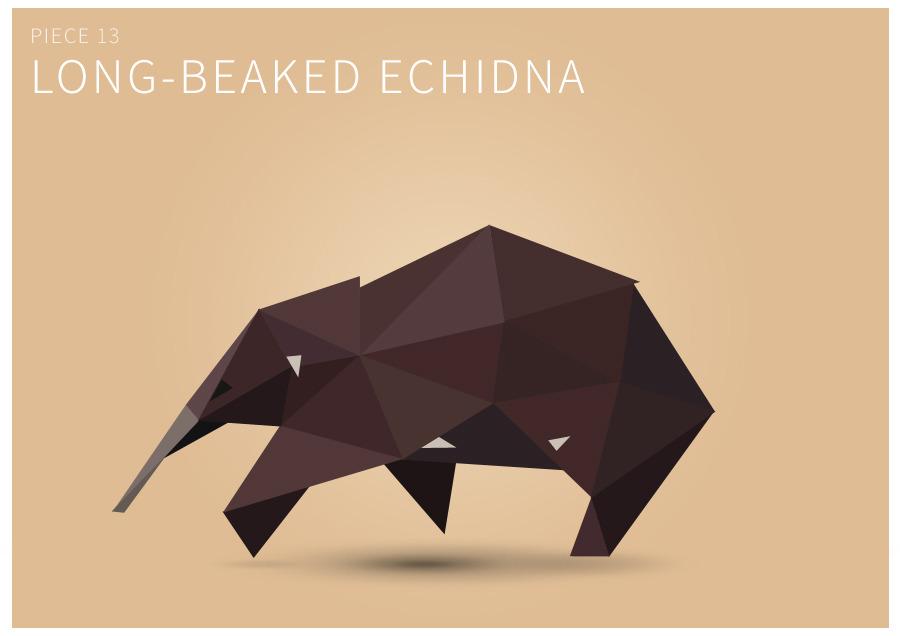 Piece 13 Long-beaked echidna