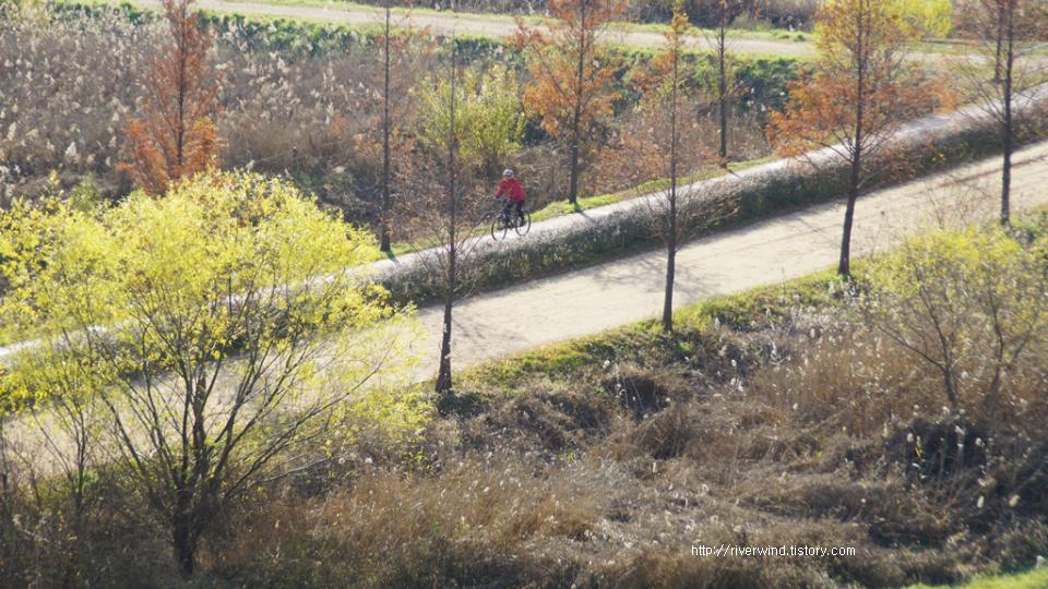 가을속으로 가는 길사진