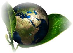 환경기능사