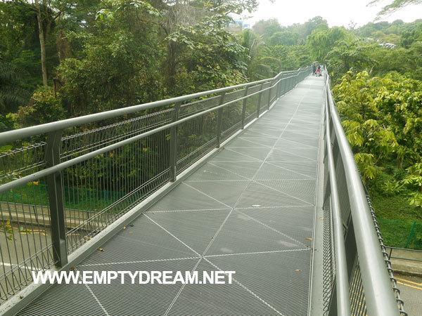 싱가포르 여행 - 서던 리지스 산책로, 호트 파크 일부 구간