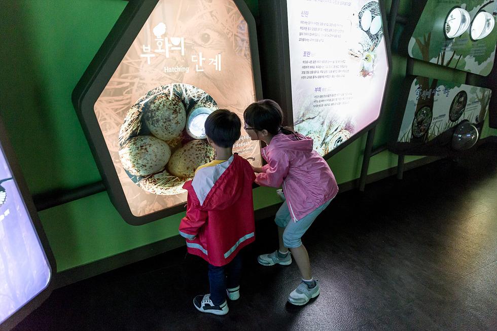 의왕 레일바이크, 호수열차, 조류생태과학관