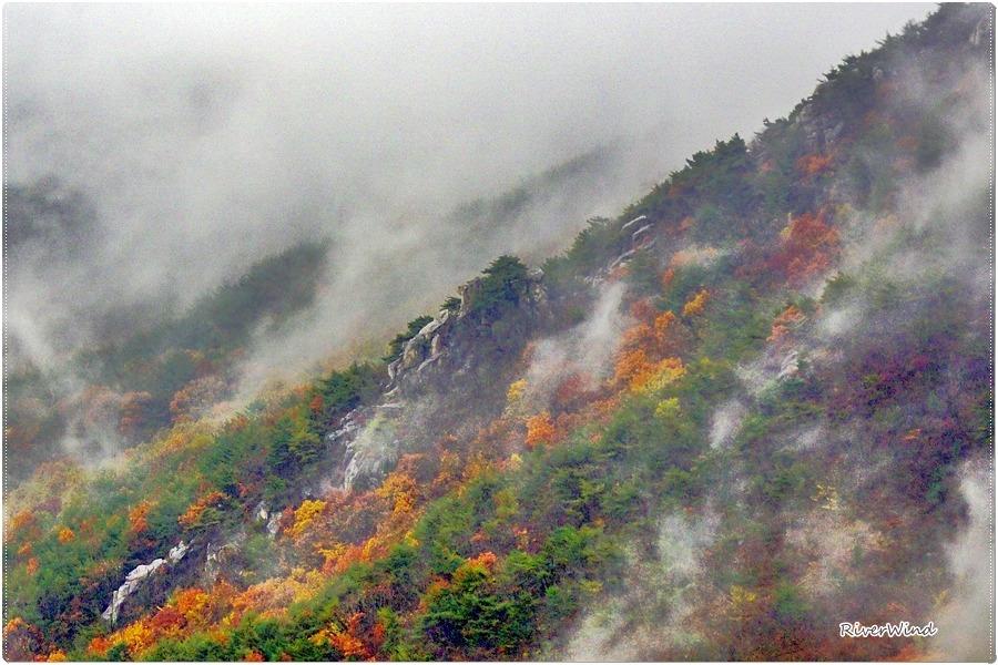 금정산의 불타는 가을
