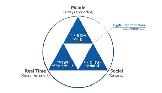 디지털 트랜스포메이션, 다이어그램