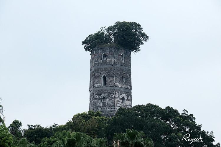 장신위섬 동탑