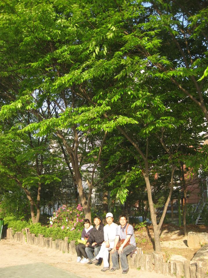 신양중 학교숲