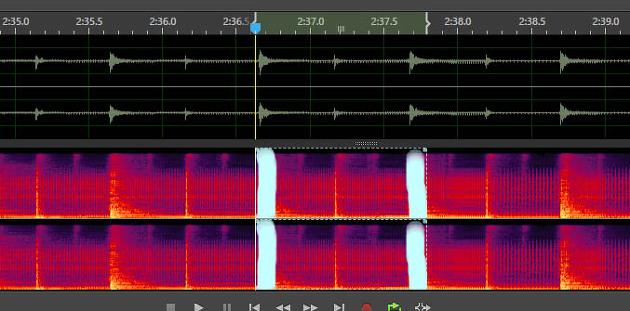 Noise reduction audition