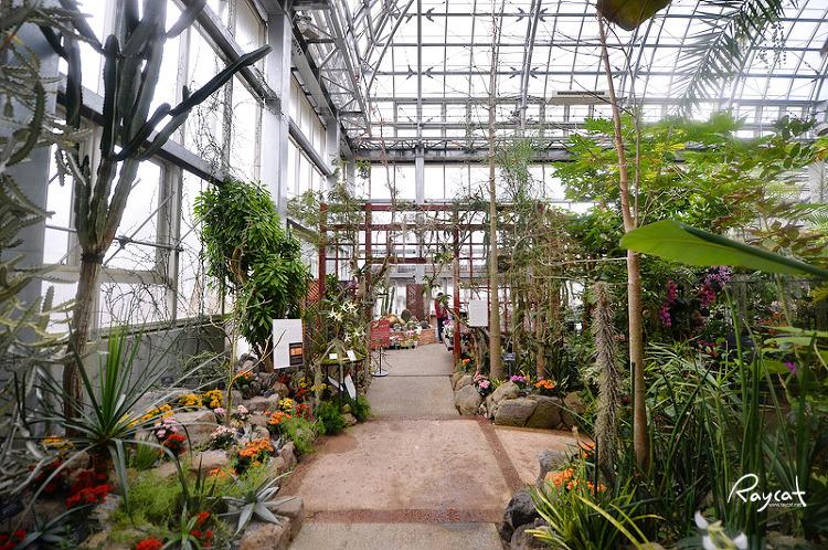 마키노 식물원 온실 내부