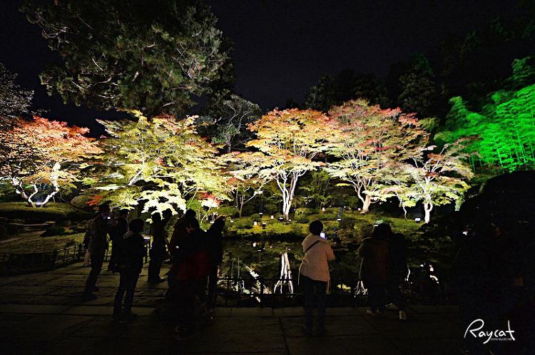 엔쓰인 단풍 정원