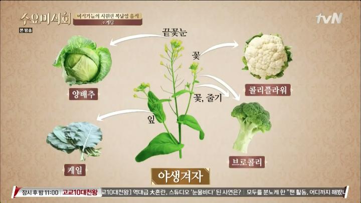 여름철 대표 보양식, 장어, 민어, 삼계탕, 초계탕.
