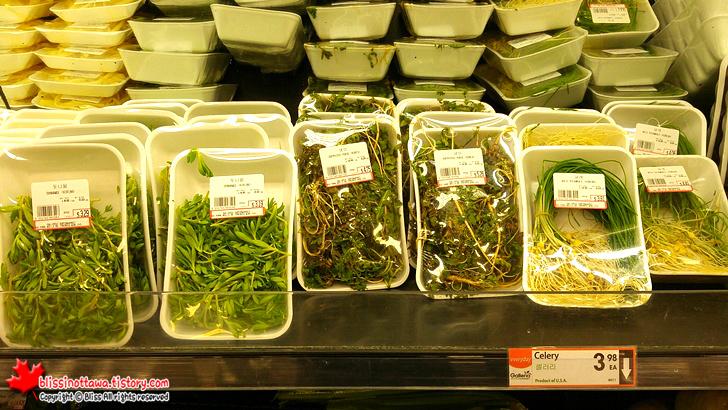 캐나다에서 파는 한국 채소들