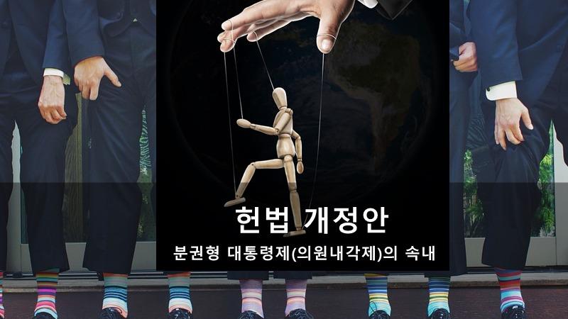 헌법 개정안 - 분권형 대통령제(의원내각제)의 속내