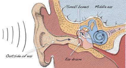 ear sick