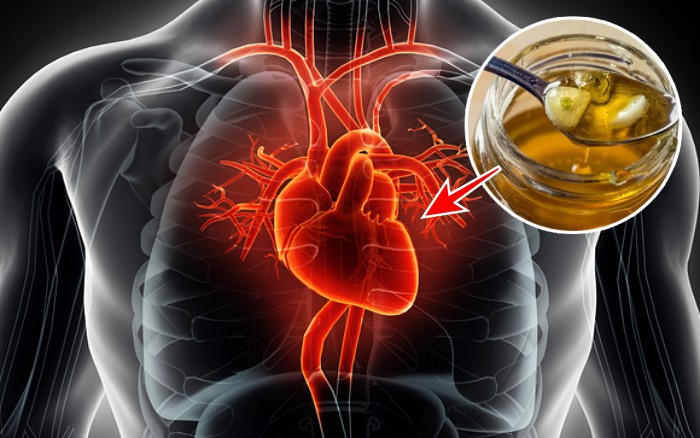 심장에좋은음식 꿀의효능