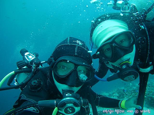 세부 스쿠버다이빙 펀다이빙