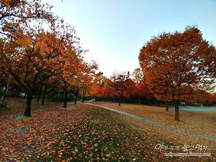 서울숲 단풍 데이트
