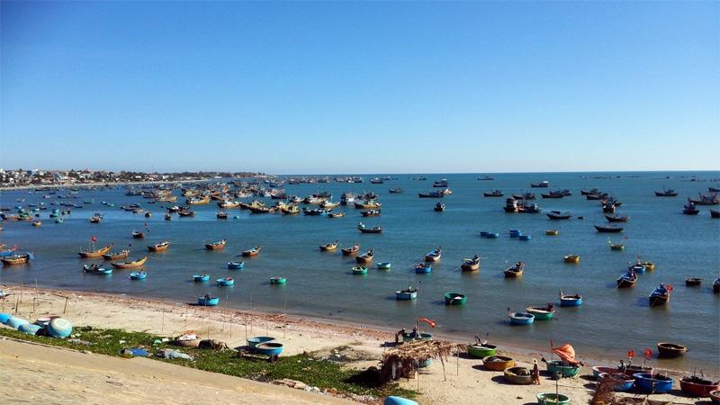 사진: 아름다운 베트남 해안가의 모습. 고기잡이 배들이 바다를 꽉 채웠다.