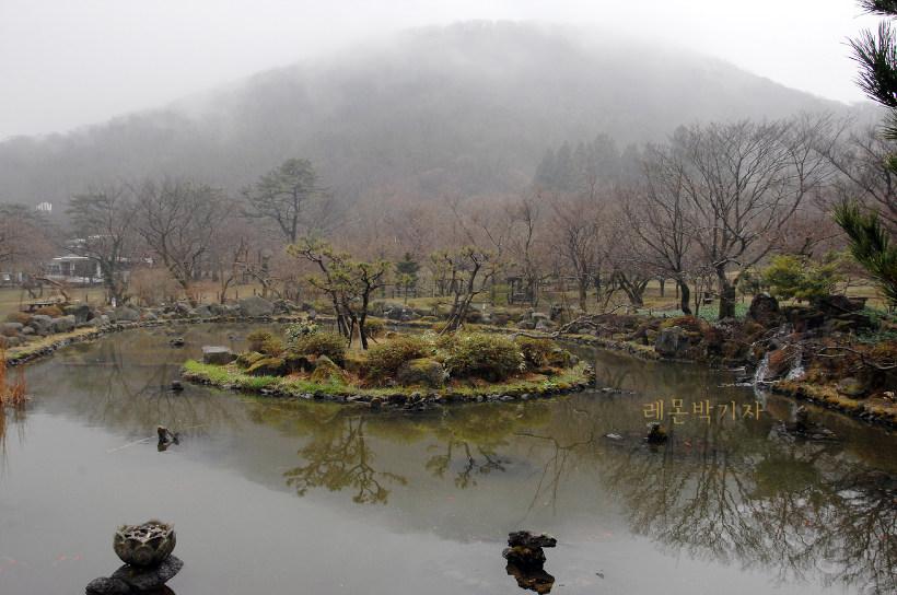 절물자연휴양림_연못4